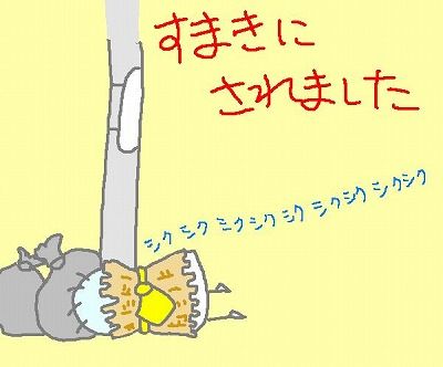 s-101102sumaki.jpg