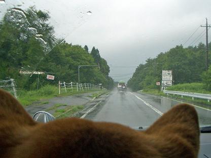 雨の中・・八幡へ