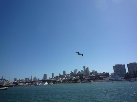 サンフランシスコ、将来住みたい!