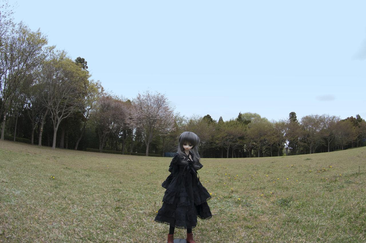 aaDSC_0150.jpg