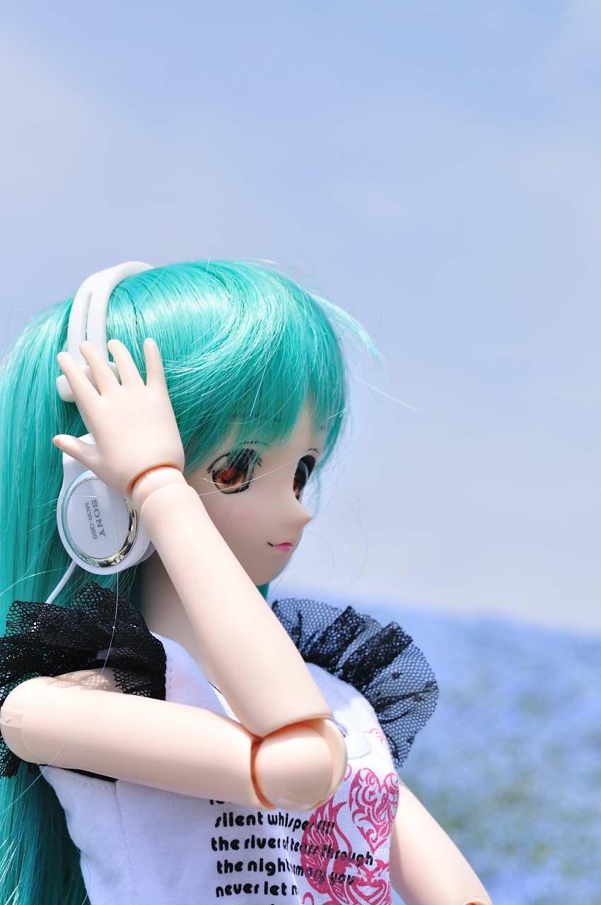 aa_1010DSC_0221.jpg