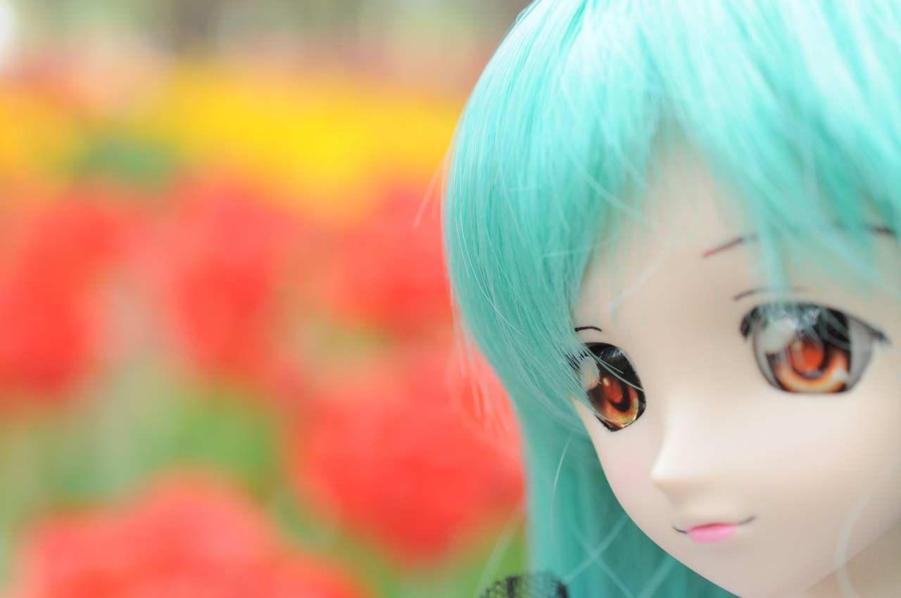 aa_1012DSC_0419.jpg