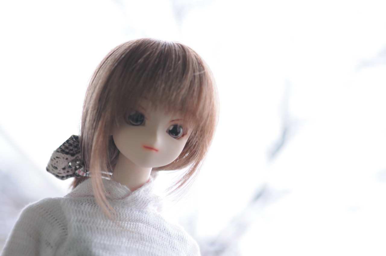 aa_830DSC_0027.jpg