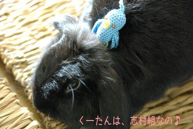 09.1.8くるみ
