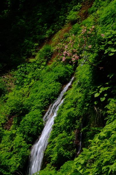 谷うつぎと布滝