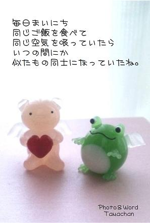 結婚記念日ss