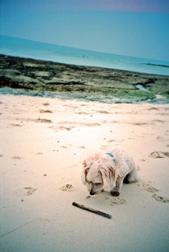 ムーンビーチ4