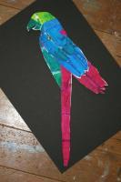 2008. 9-1,2 虹色鳥 完成品 029_R