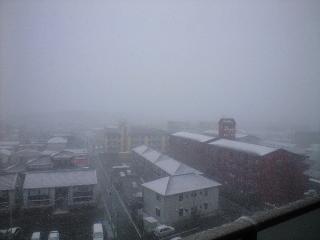 1月24日雪1