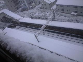 1月24日雪2