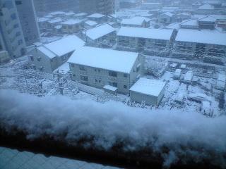 1月24日雪3