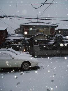 雪が降った日