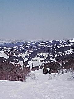 ski-only.jpg