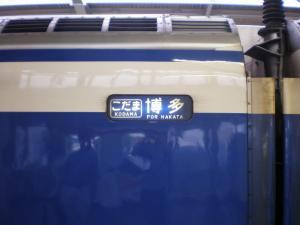PA060510.jpg