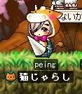 peing.jpg