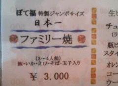 20080311000013