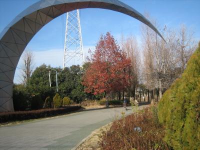 三橋公園1