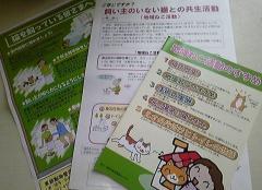 100929_155230_convert_20100929160246.jpg