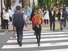 画像09 010 銀座1おんぶ