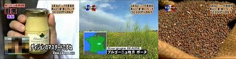 gochi061013-05.jpg