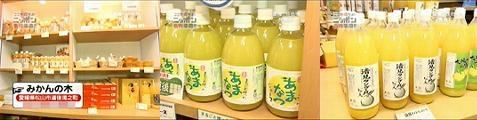 japan060916-07.jpg