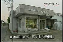 roseday080114-01.jpg