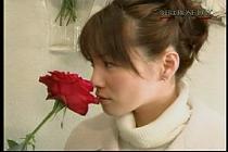 roseday080114-05.jpg
