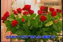 roseday080114-11.jpg