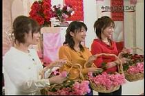 roseday080114-21.jpg