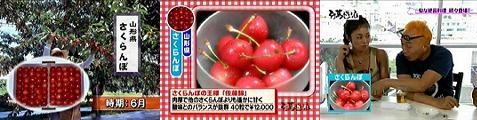 tokoro060623-10.jpg