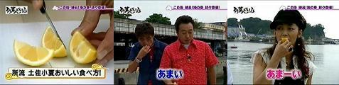tokoro060707-5.jpg