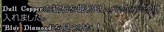 WS004960.JPG