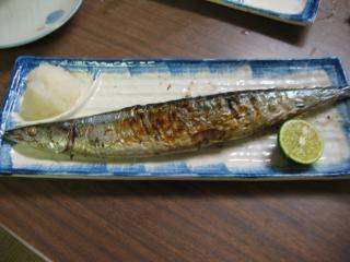 パーフェクト秋刀魚!