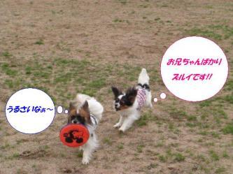 02-04_20090322163700.jpg