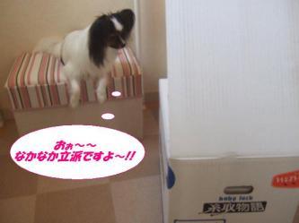 03-04_20090804193625.jpg