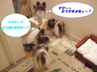 04-08_20090109192909.jpg