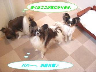 10-02_20090113094839.jpg
