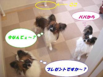 10-03_20090113094847.jpg