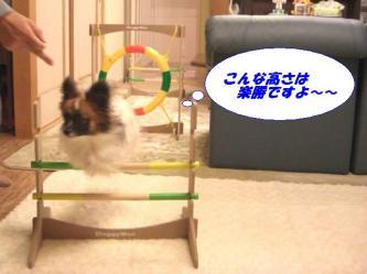 10-08_20090113094935.jpg