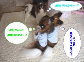 10-08_20090610163300.jpg