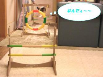 10-09_20090113094943.jpg