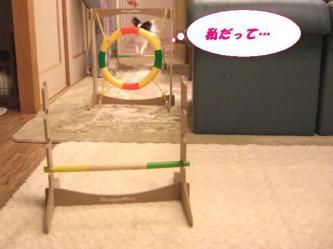 10-14_20090113095022.jpg