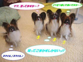 11-02_20090713143758.jpg