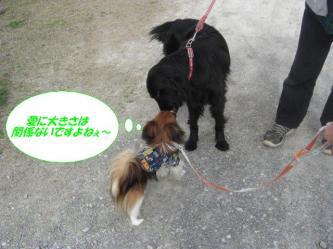 12-02_20090325131440.jpg