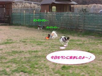 12-03_20090325131553.jpg