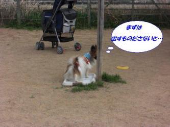 12-05_20090325131611.jpg