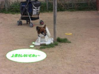 12-07_20090325131629.jpg