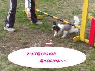 12-13_20090325131721.jpg