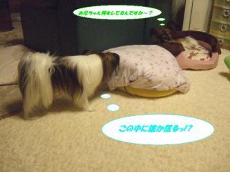 18-01_20090830141034.jpg