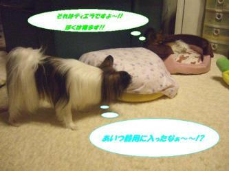 18-02_20090830141044.jpg